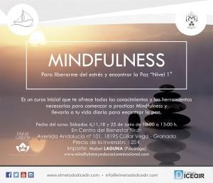mindfulness paz interior desarrollo personal estres tikun centro del bienestar cullar vega granada andalucia españa