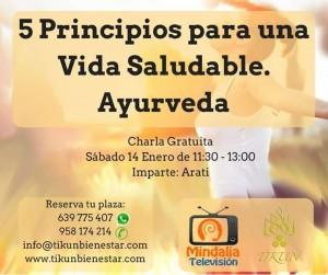 5 principios para una vida saludable Ayurveda tikun centro del bienestar cullar vega granada andalucia españa