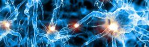 Decodificación emocional transgeneraciones biodescodificacion enfermedades emociones arbol genealógico roberto goltzman tikun centro del bienestar cullar vega granada andalucia