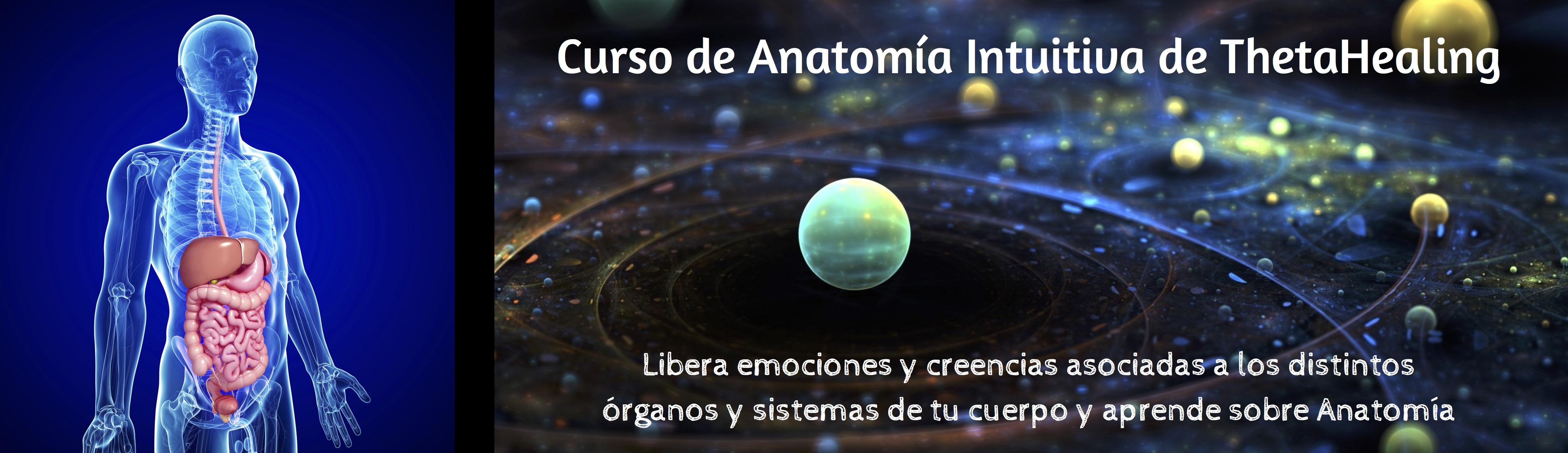 Banner-de-Anatomia-Intuitiva